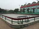 DDA Sports Complex