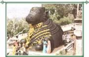 Bull Temple Bangalore