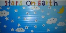 Stars On Earth