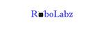 RoboLabz STEM School