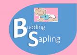 Budding Sapling