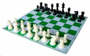 Smart Brains Chess Academy