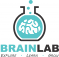 The Brain Lab
