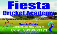 Fiesta Cricket Academy
