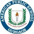 American Public School