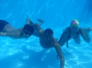 David Swimming Academy