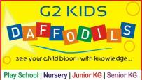 G 2 Kids Daffodils